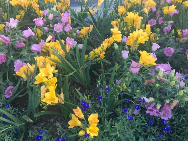 evite-easter-brunch-spring-blooms