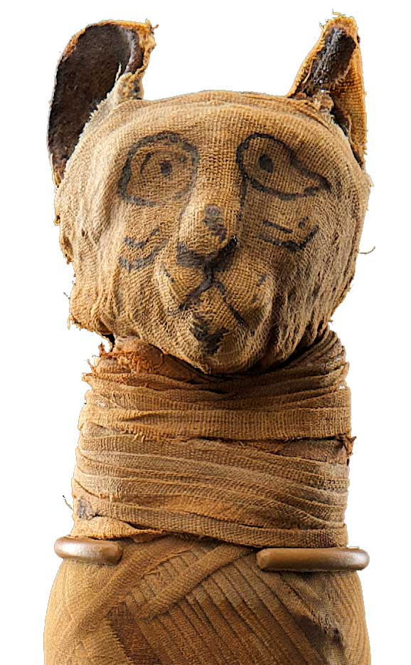 mummies-of-the-world-egyptian-can