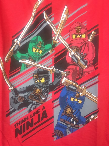 legoland-ninjago-world-think-like-a-ninja