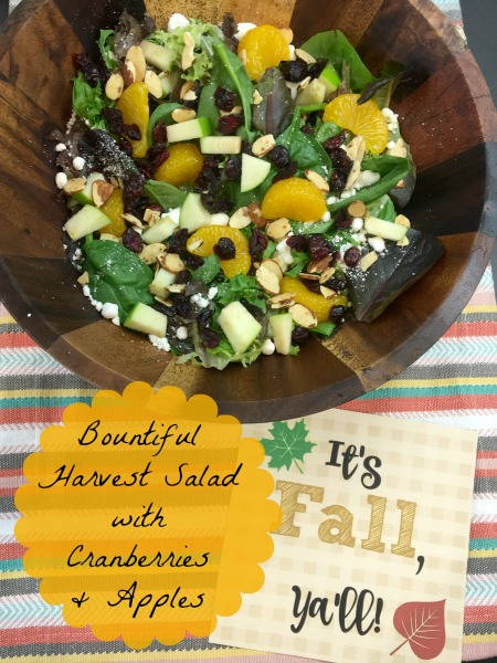bountiful-harvest-salad-with-cranberries-and-apples