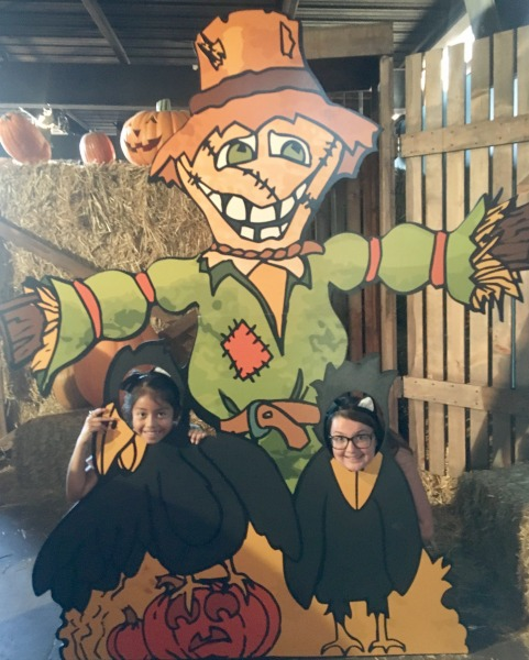 knotts-spooky-farm-maze-photo