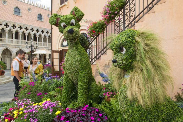 epcot-flower-and-garden-lady-and-the-tramp-topiary
